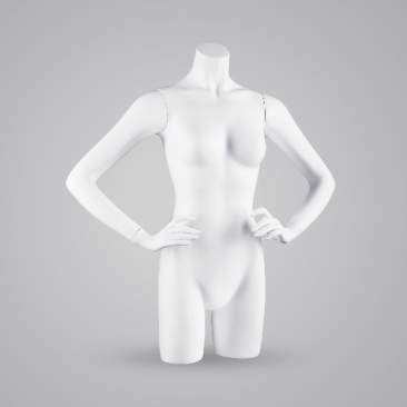 100 BASIC FEMALE TORSOS - Torsos Torsos & displays
