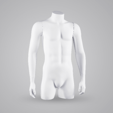 100 BASIC MALE TORSOS - Torsos & displays